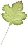 jkneipp_youaremyhappy_leaf.png