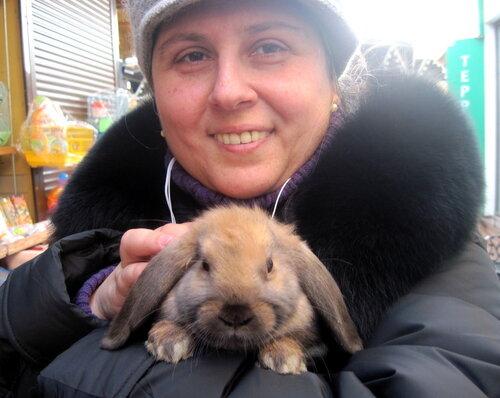 кролик, Елена Каминская
