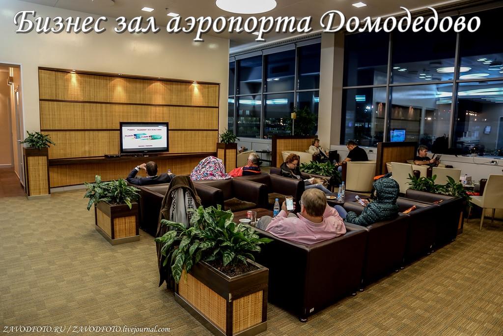 Бизнес зал аэропорта Домодедово.jpg