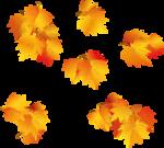 Осень41