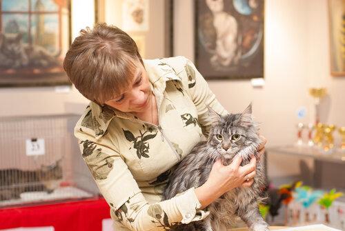 """Международная выставка кошек AFC """"Удивительные лесные кошки"""", 1 марта 2014 г. Сургут 0_b25b6_f99272a8_L"""