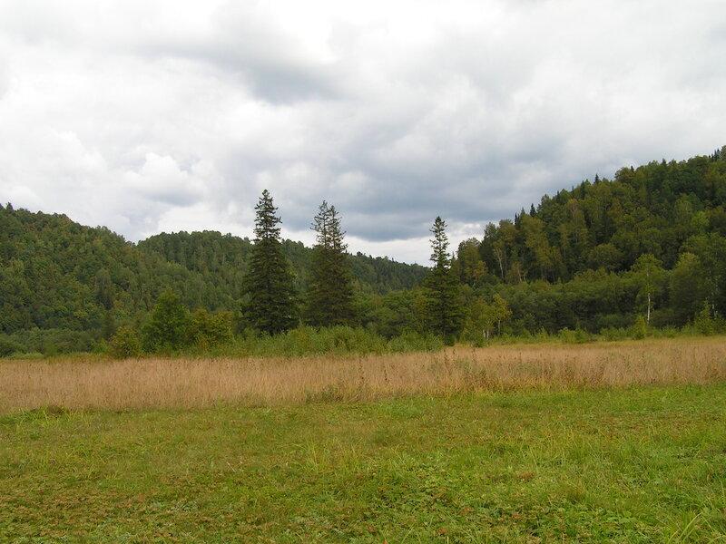 Вид на долину (04.07.2013)