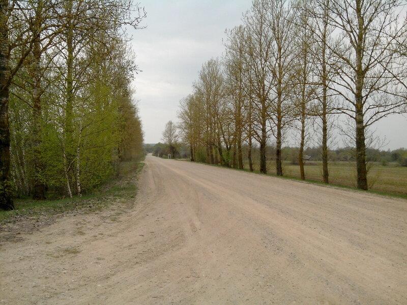 дороги Камянецкого района