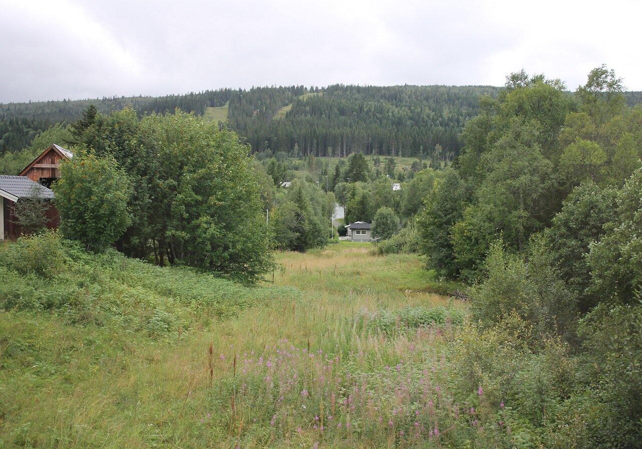 Сёр-Трёнделаг, Рёрус, природный парк