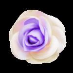 Lavender Paradise (27).png