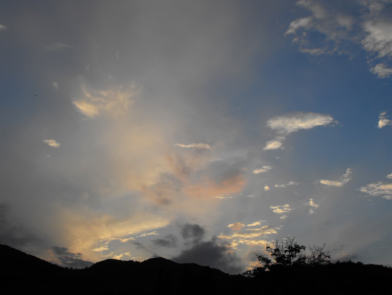 закат, Буковина
