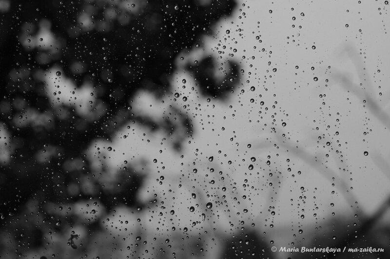 Дождливый день, Саратов, 27 сентября 2013 года