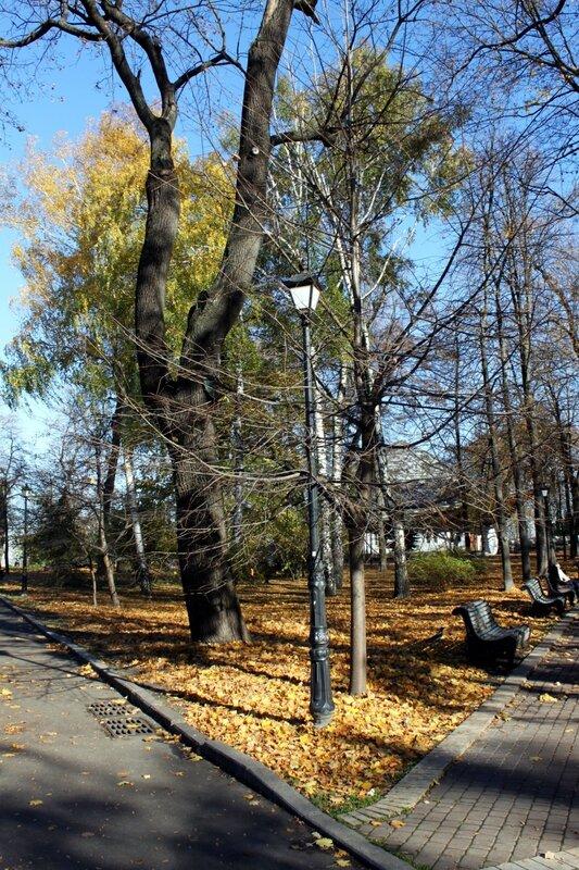 Участок Мариинского парка