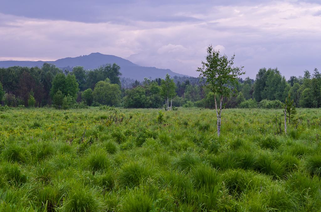 8. Тот же ландшафт, но снятый на зеркальную камеру Nikon D5100 и объектив Nikon 17-55mm f/2.8 при ФР=55 миллиметров. Гора Ялангас недалеко от Белорецка
