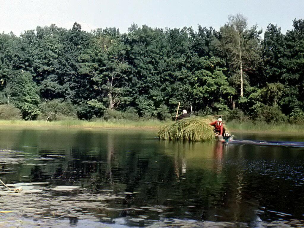 На реке Серёже.