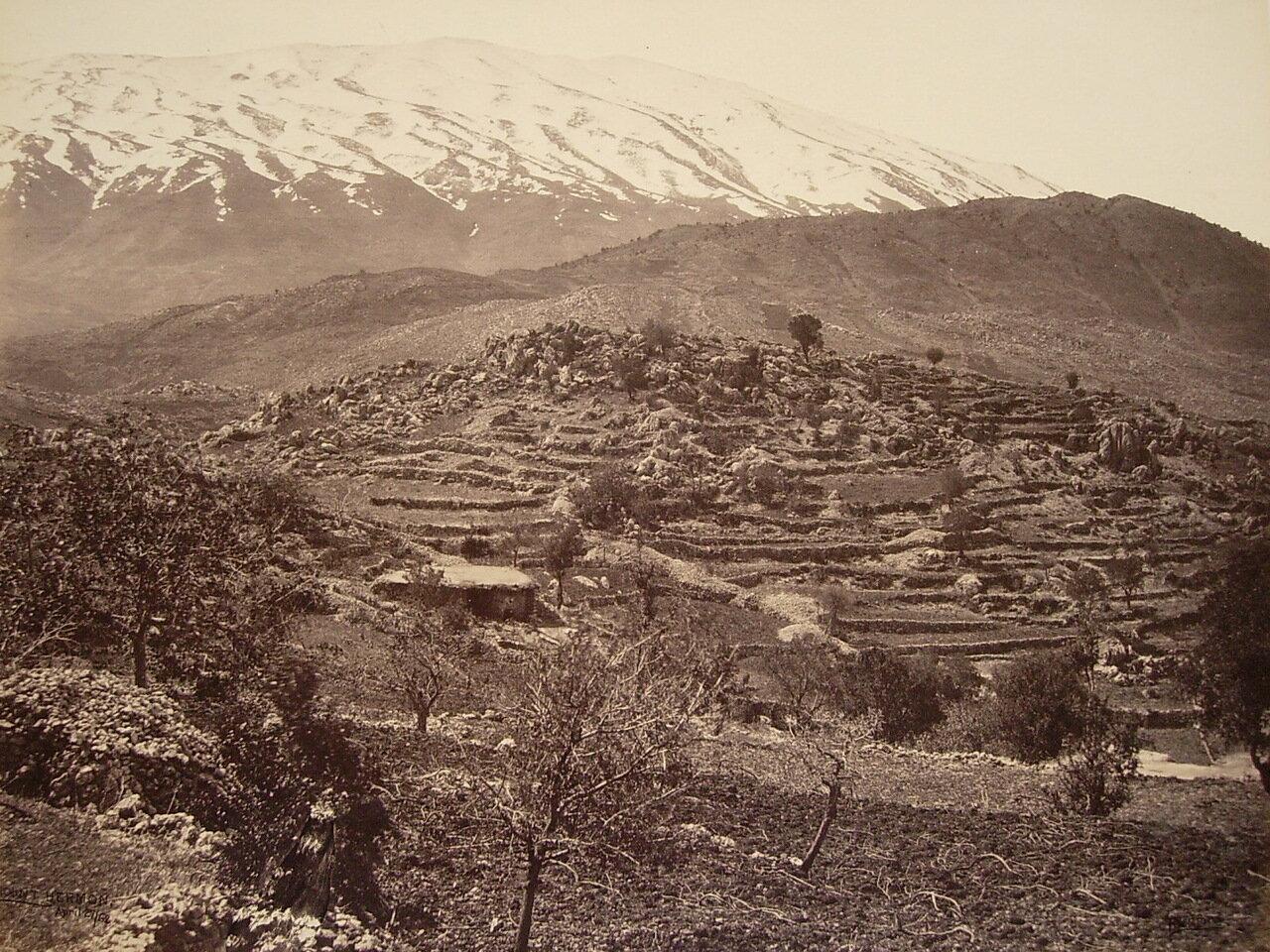 27 апреля 1862. Вид на Хермон из Рашайи