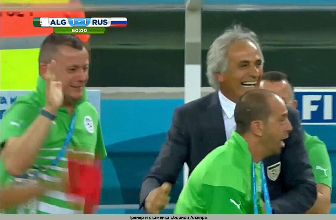 Тренер и скамейка сборной Алжира.jpg