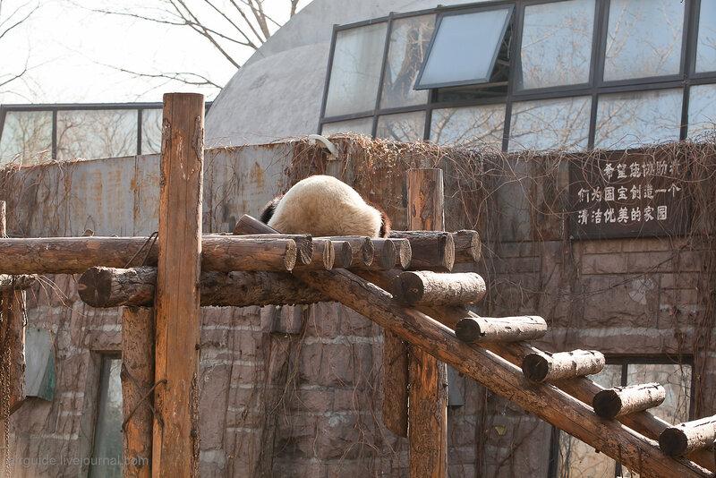 Фото: airguide.livejournal.com