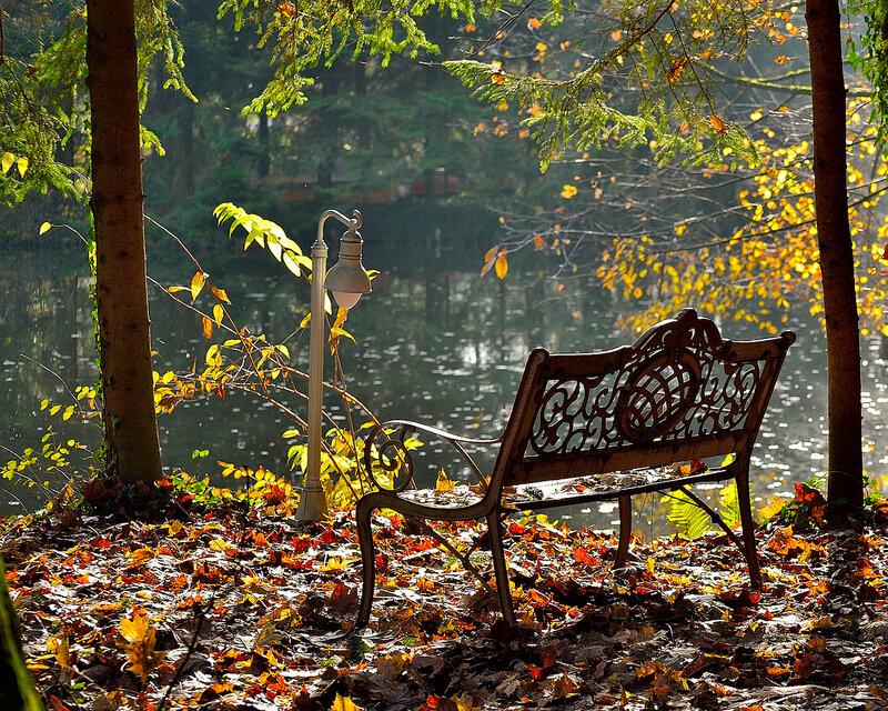 Заметает листопад осеннее безмолвие