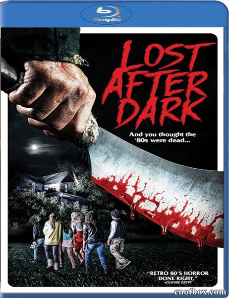 Потерявшиеся во тьме / Lost After Dark (2014/BDRip/HDRip)