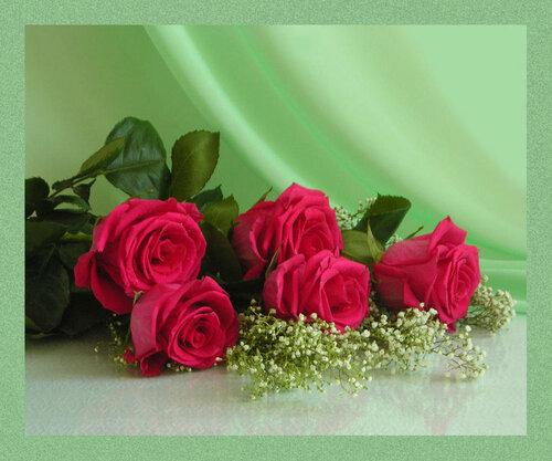 Пять роз на нежном зеленом фоне открытка поздравление картинка
