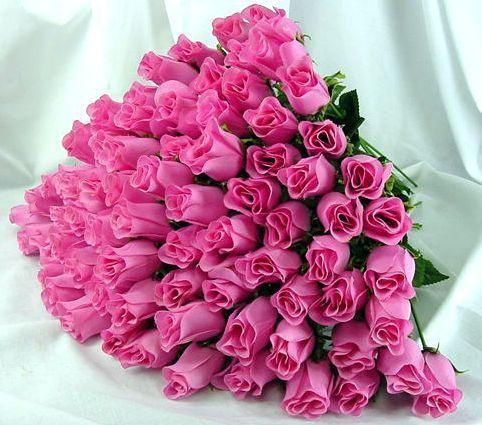 Розовые розы. Большой букет