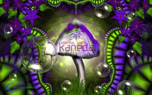 http://img-fotki.yandex.ru/get/9325/226544952.0/0_edb49_89fe33a1_orig.jpg