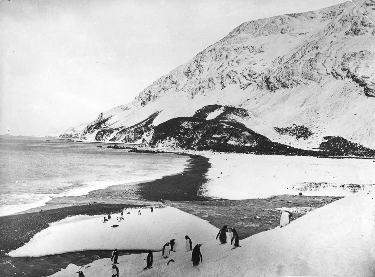 46. Пляж на острове Элефант, где экспедиция создала свой лагерь. Ближайшим реально достижимым населе