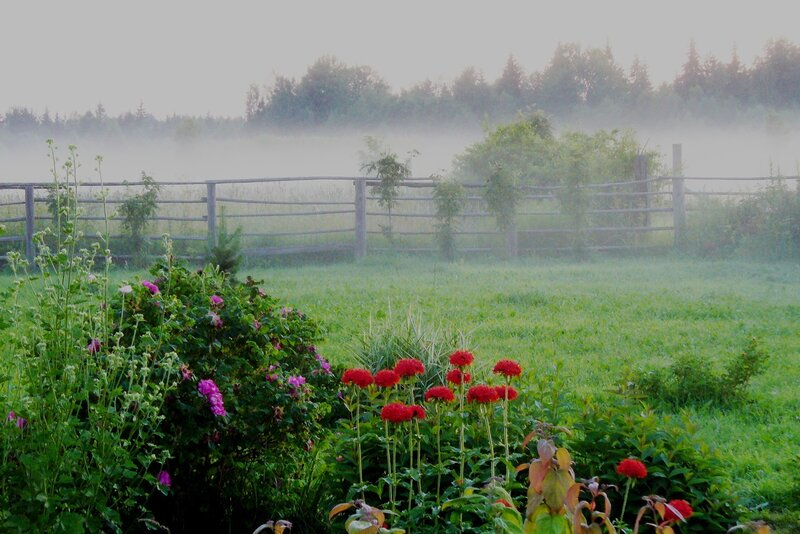 Вечерний туман.