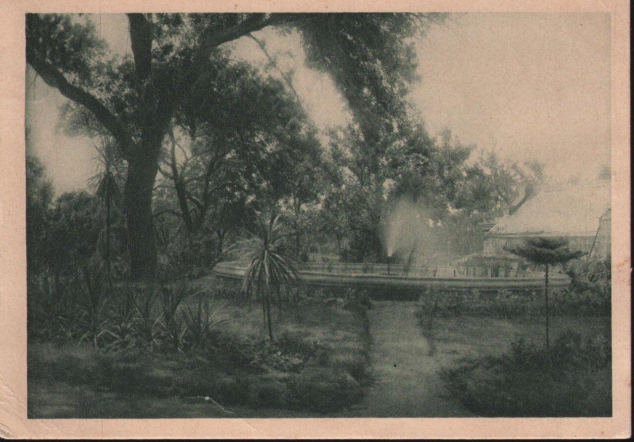 Ботанический сад 1931