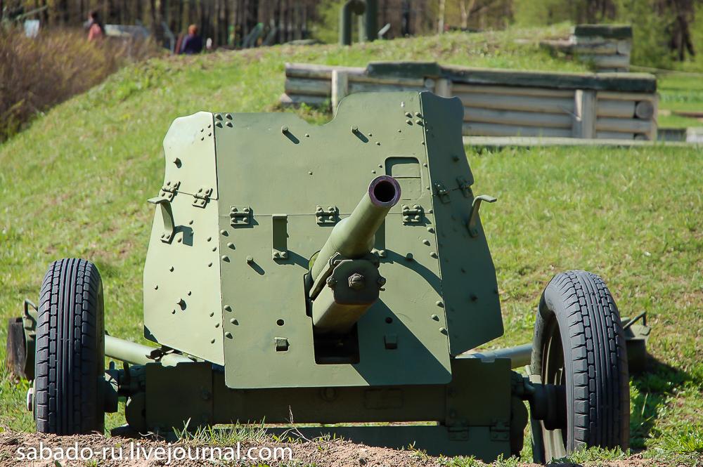 пушки в парке победы