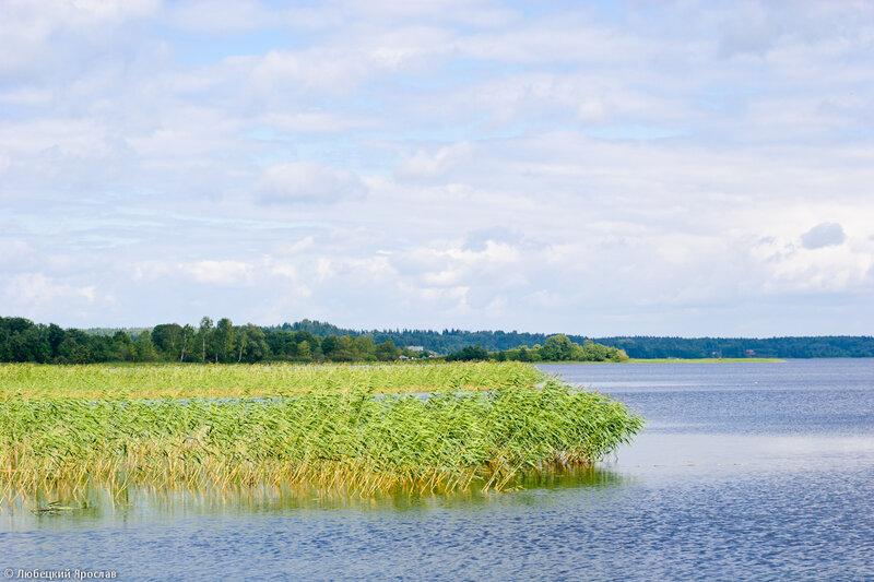 Свапуще, Берёзовский плёс озера Селигер, близ пристани