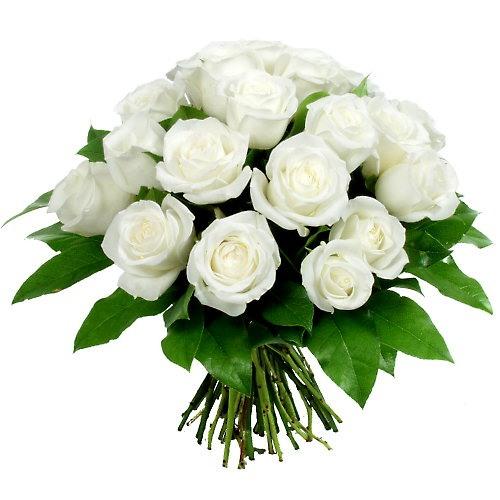 Вам открытка: Букетик белых роз тебе фото картинка поздравление скачать