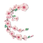 blossom_by_jaejade-d5xsfbk.png