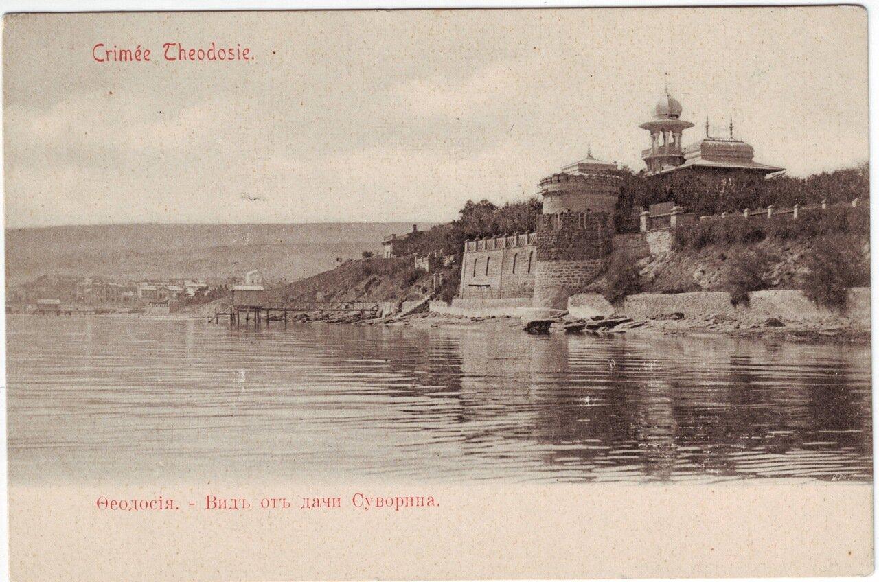 Вид от дачи Суворина