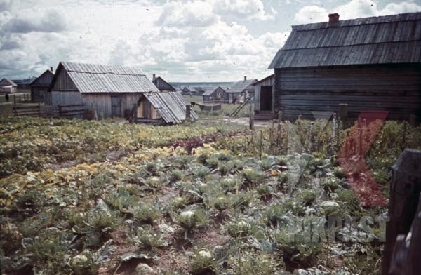 stock-photo-at-the-beresina-near-baryssau-russia-1942-11271.jpg