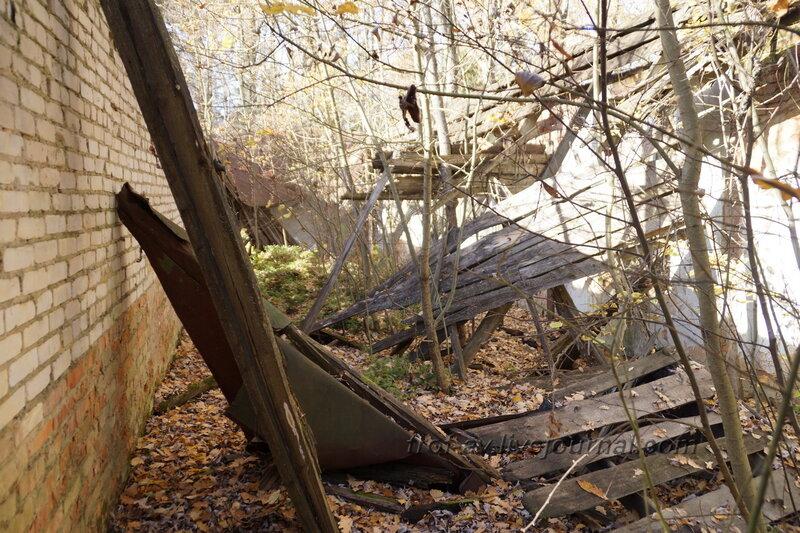 Развалины санаторной столовой, Усадьба Любвино, Тучково