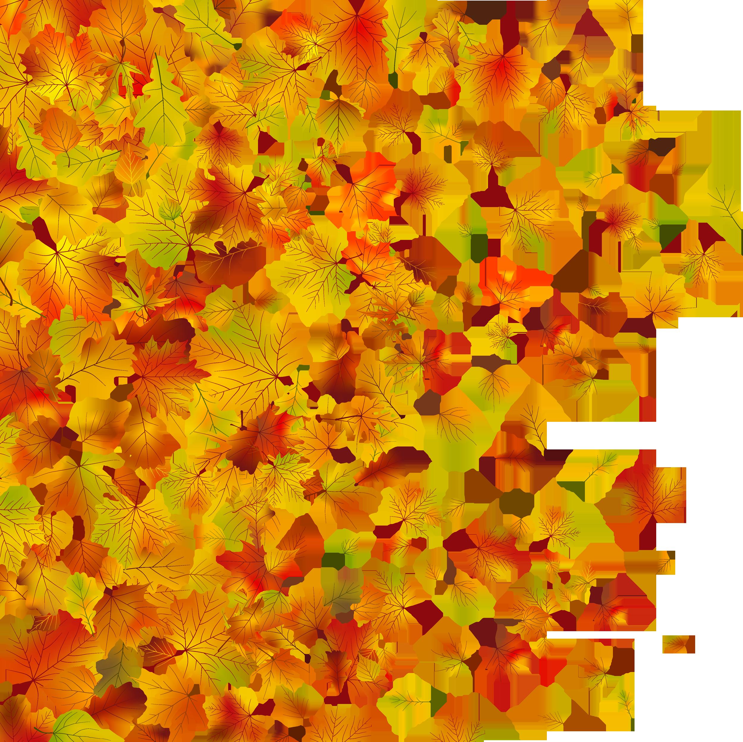 Картинки кленовые листья фото
