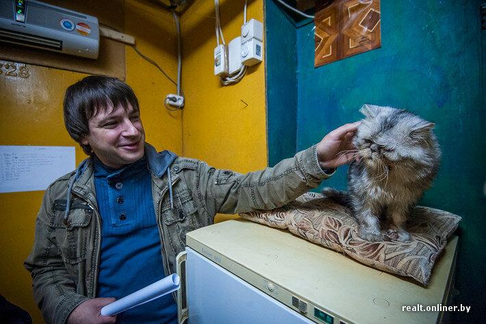 Минский приют для животных, суперкот