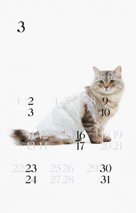 Корпоративный календарь... для котиков. Бренд United Bamboo и StudioLin