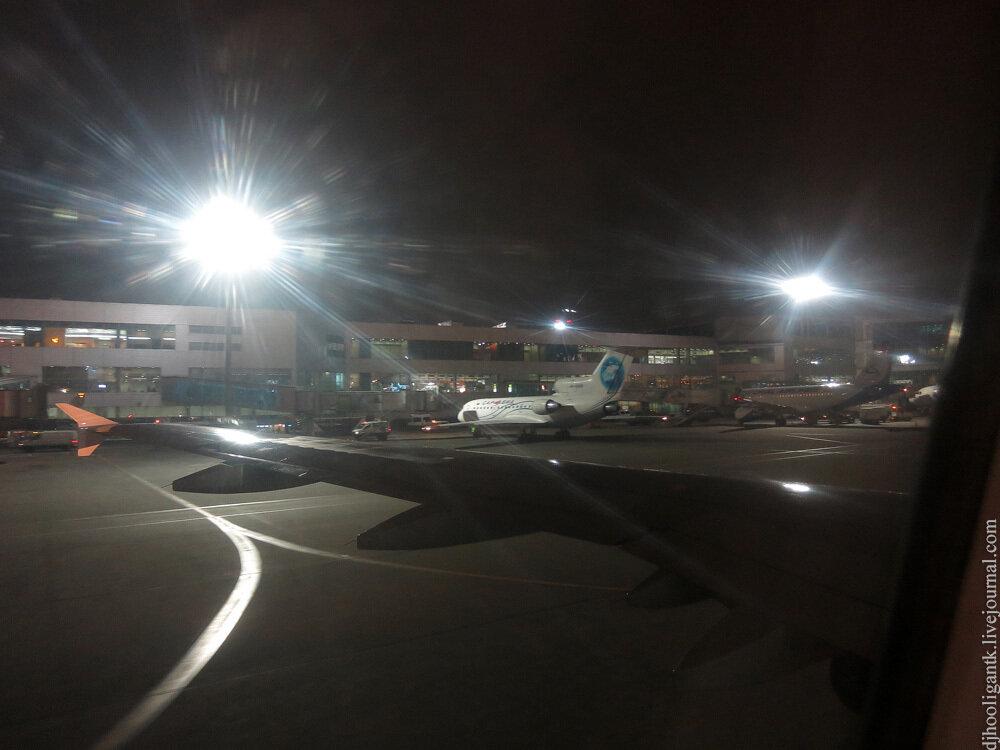 Авиакомпания S7 Airlines Сибирь официальный