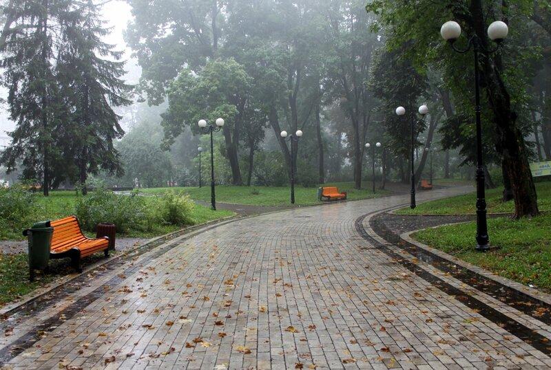 Главная аллея Мариинского парка