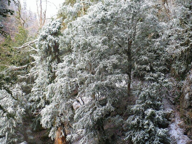 Фотограф Алексей Значков, Гуамское ущелье, зима, Кавказ