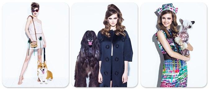 Линдси Виксон с собачками / Lindsey Wixson by Jacques Dequeker in Vogue Brazil august 2013