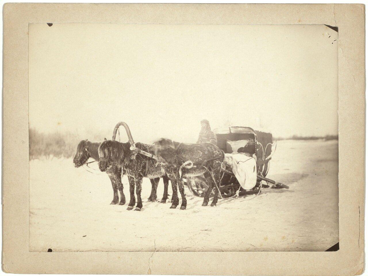 Сани, запряженные тройкой лошадей