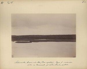 6.8.1887. Южная сторона Вороньей реки
