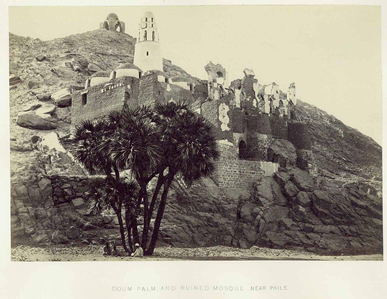 Филе. Окрестности. Гифене и руины мечети.1862