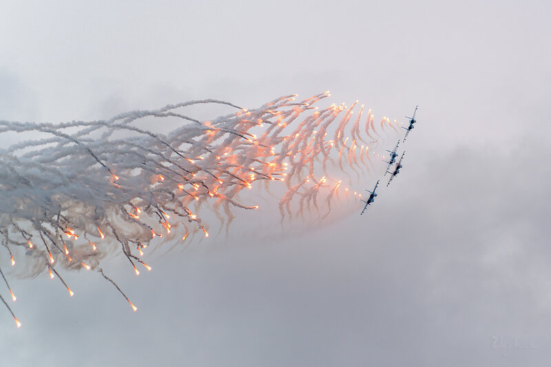 Сухой Су-27 (RF-92305 / 10 красный) D802225