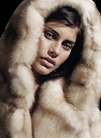 http://img-fotki.yandex.ru/get/9328/131624064.4be/0_ce40a_db2725a5_XL.png