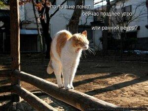 http://img-fotki.yandex.ru/get/9328/194408087.5/0_ba6dc_97895604_M.jpg