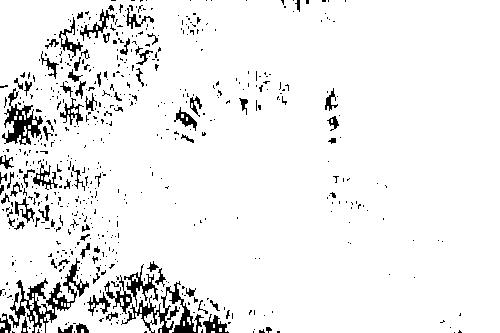 Клипарт стекло