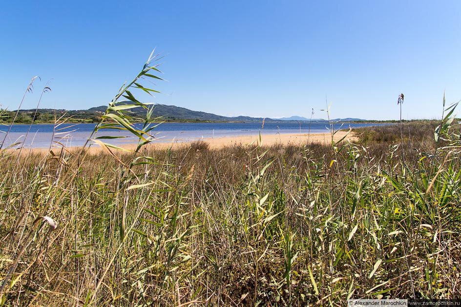 На берегу озера Кориссион (Корфу, Греция)