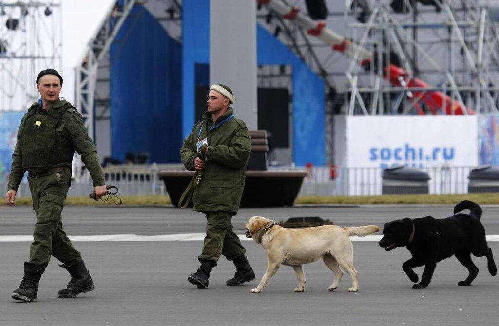 Кинологи со служебными собаками в круглосуточном режиме заняты поиском взрывчатых веществ (8)