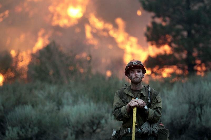 Ты зачем лес поджёг?