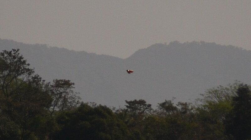 НЛО над Сьюдад Колон, Коста-Рика 22 марта 2015 года